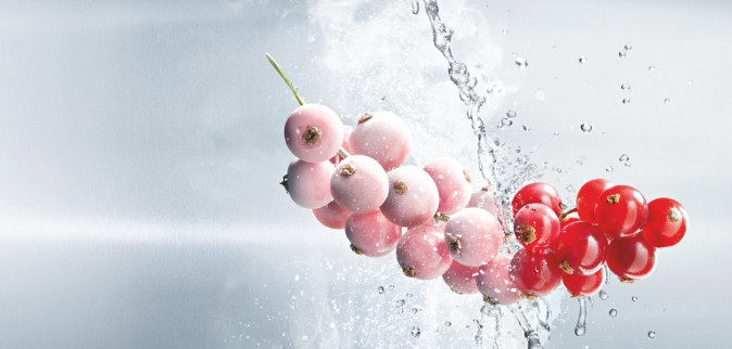 Highlight teaser image of frozen berries. Can be used in SDL website homepage.